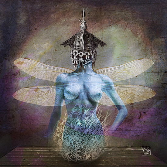 The flight of the dragonfly Série Daydream, 2009, assemblage d'images, format 60x60 cm