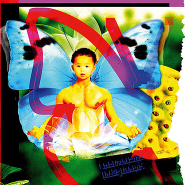 """""""Quand le désir de prendre disparaît, les joyaux apparaissent"""" - Yoga-Sutras de Patanjali"""