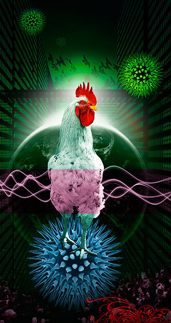 "Illustration ""H5N1"""
